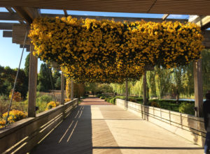 Exterior view of the Chicago Botanic Gardens